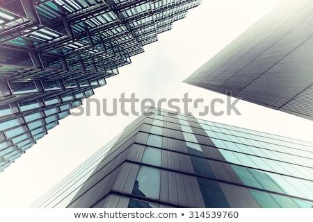 béka · vágási · körvonal · rajz · aranyos · vektor · illusztráció - stock fotó © bluering