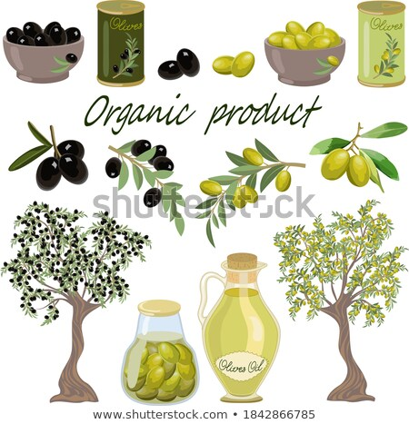 big collection of logos natural farm product Stock photo © butenkow