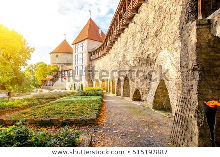 Oude binnenstad muren Tallinn stad muur Estland Stockfoto © backyardproductions