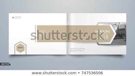 Magazin borító oldal minimalista terv cég Stock fotó © SArts