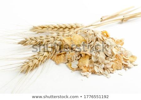 Kahvaltı gevreği beyaz kahvaltı tahıl kimse Stok fotoğraf © Digifoodstock