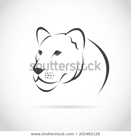 Stylized black lioness. Lion silhouette. Vector isolated on a wh Stock photo © NikoDzhi