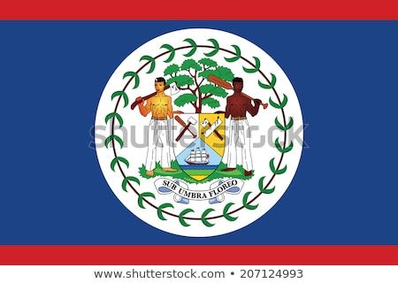 Belize flag, vector illustration Stock photo © butenkow