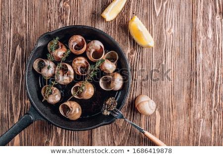 Snails with garlic herbs butter Stock photo © Melnyk