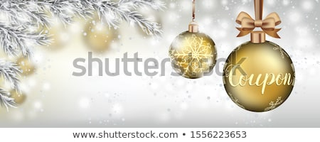 Frozen Twigs Snowfall Golden Baubles Christmas Stars Header Stock photo © limbi007