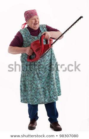 senior gardener with hedge trimmer at garden Stock photo © dolgachov