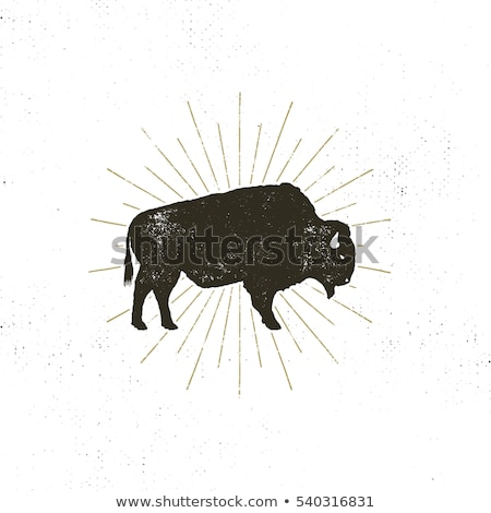 Buffalo icon silhouette. Retro letterpress effect. Bison black symbol pictogram isolated. Use for st Stock photo © JeksonGraphics