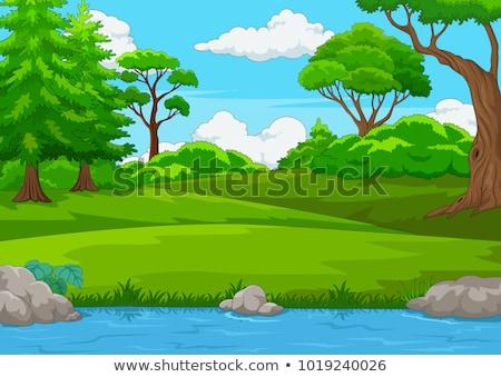 多くの · 恐竜 · 湖 · 実例 · 風景 · 庭園 - ストックフォト © colematt
