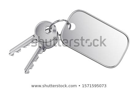 metallico · chiave · bianco · isolato · illustrazione · 3d · porta - foto d'archivio © iserg