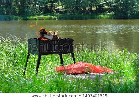 fogueira · casal · sessão · vinho · mulher - foto stock © vapi