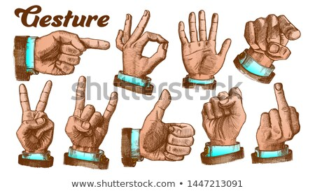 multiple male color hand gesture set vector stock photo © pikepicture