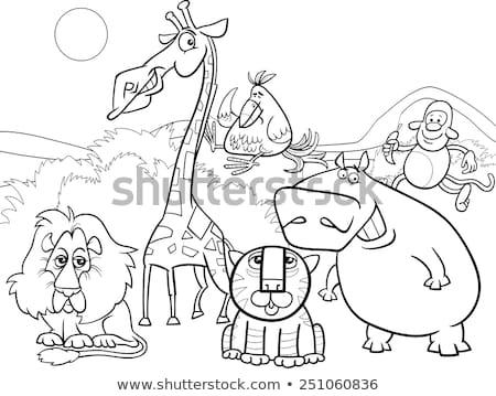 Cartoon safari dieren groep pagina zwart wit illustratie Stockfoto © izakowski