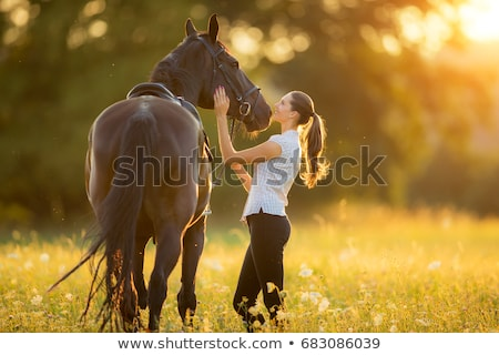 Foto stock: Woman And Horse On Nature Park Or Farm Forest