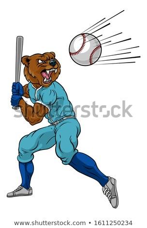 Beer honkbalspeler mascotte bat bal Stockfoto © Krisdog