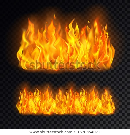 Fire background Vector realistic. Flame burning 3d illustration  Stock photo © frimufilms