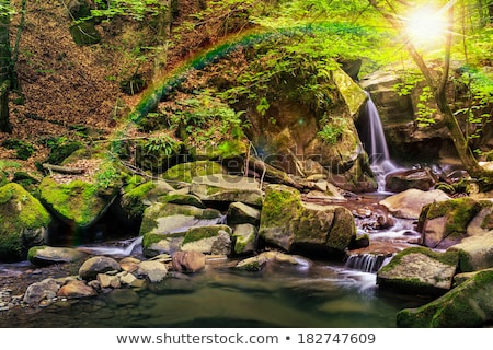 Rainbow over rock in waterfall Stock photo © backyardproductions