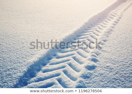 Trator inverno floresta neve poder branco Foto stock © MichaelVorobiev