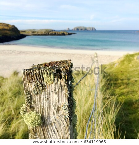 wooden fence in scotland stock photo © hofmeester