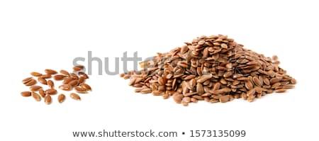 flax seeds Stock photo © dornes