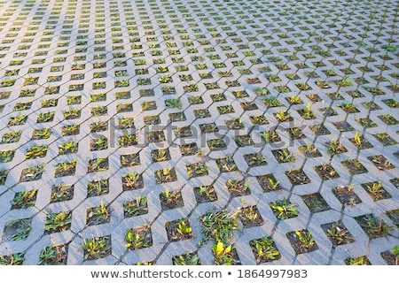 Tuğla bloklar dokular dört taşlar Stok fotoğraf © MilosBekic
