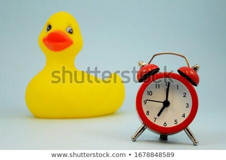 Fürdőkád óra kacsa fehér citromsárga fürdőkád Stock fotó © luapvision