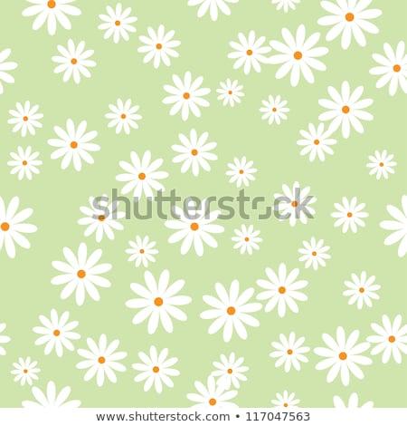 Senza soluzione di continuità modello di fiore wallpaper eps vettore file Foto d'archivio © beholdereye