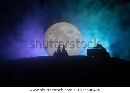 para · człowiek · krajobraz · świetle · księżyc - zdjęcia stock © spectral