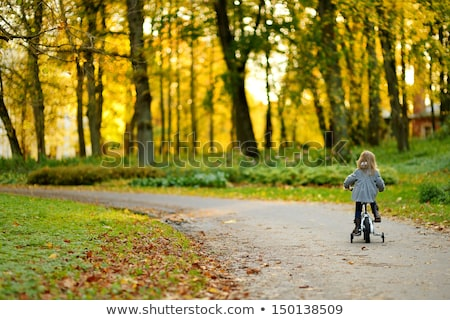 adorable · fille · automne · bois · photo · petite · fille - photo stock © Anna_Om