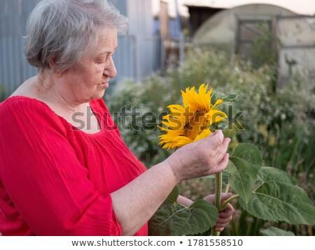 Joyful mature lady with sunflower Stock photo © roboriginal