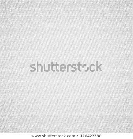fehér · vászon · textúra · vektor · terv · illustrator - stock fotó © Ecelop