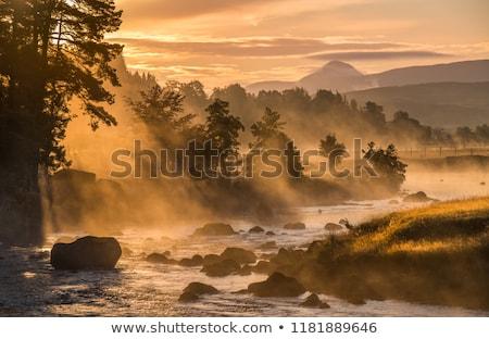 Nebuloso escócia paisagem típico cena Foto stock © garethweeks