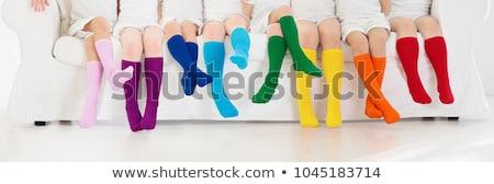 Tricotado perneiras isolado branco engraçado Foto stock © RuslanOmega