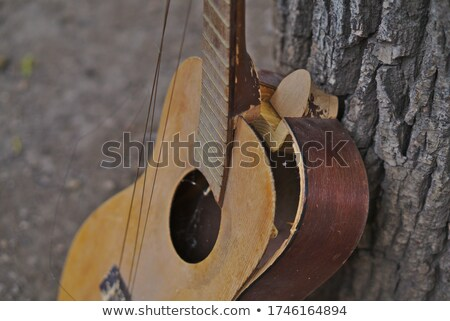 Smashed guitars Stock photo © kistrialos