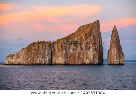 ストックフォト: 海 · 鳥 · 飛行 · 水 · 島々