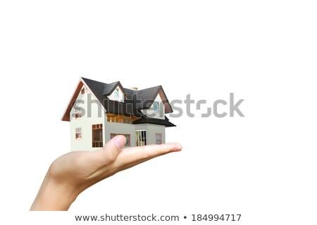 красочный модель домах набор белый дома Сток-фото © RuthBlack
