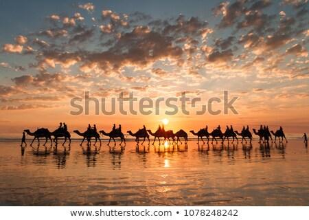 Simetri yansıma boş sandalye gölet gün batımı Stok fotoğraf © CaptureLight