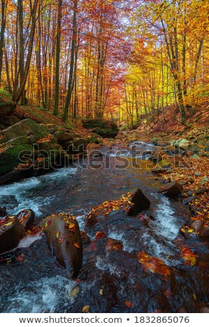 Falls among the rocks and autumn trees stock photo © azjoma