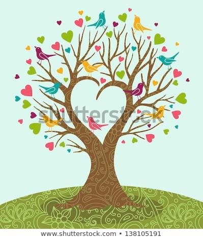 Hart boom vogels vector cute vogel Stockfoto © beaubelle