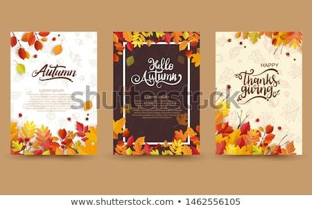 Stock fotó: Autumn Card
