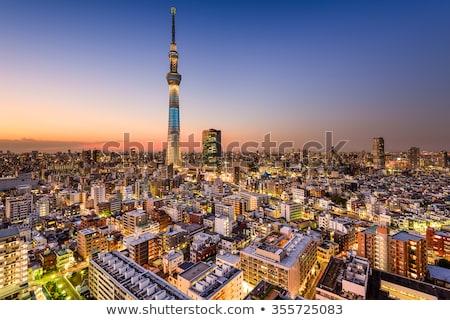 Tokyo aydınlatma akşam karanlığı Japonya gökyüzü Bina Stok fotoğraf © vichie81