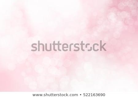 Pastel rosa bokeh gradiente papel Foto stock © barbaliss