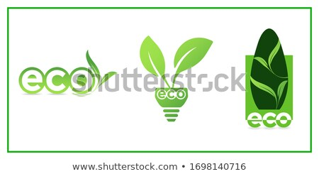 bio and eco words stock photo © timurock