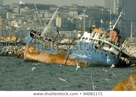 судно крушение Чайки ржавые Мир войны Сток-фото © smithore