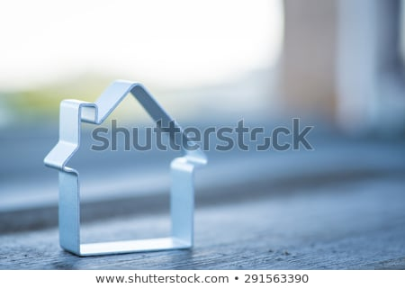 silver metallic house stock photo © Krisdog