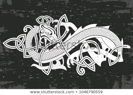 Deux fantastique dragons ciel domaine montagnes Photo stock © carodi