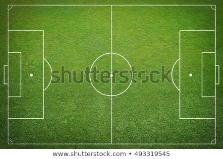 Futball aréna felső kilátás fű futball Stock fotó © -Baks-