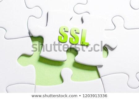 SSL - Text on Blue Puzzles. Stock photo © tashatuvango