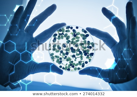 close up of petri dish with chemical in lab Stock photo © dolgachov