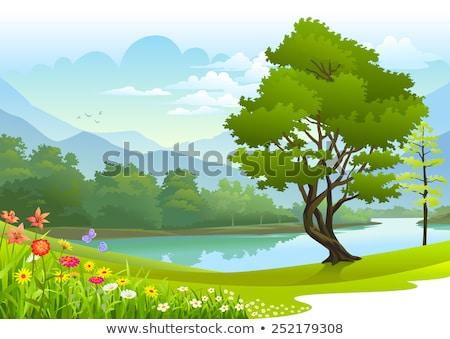 tó · zöld · fák · magas · döntés · fotó - stock fotó © Sportactive