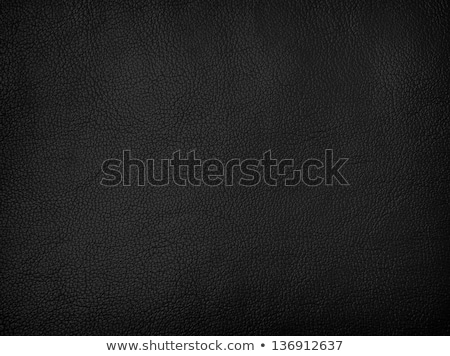 black leather sofa Stock photo © kokimk